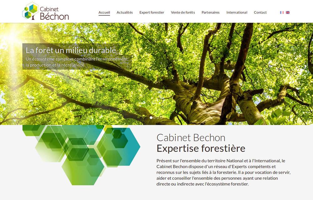 developpement drupal cabinet bechon